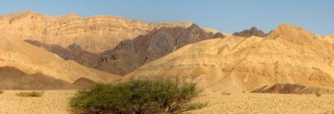 Deep Desert Israel Jeep Tours, Rappelling and Desert Activities, Southern District, Israel