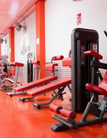 Bull Gym, La Linea