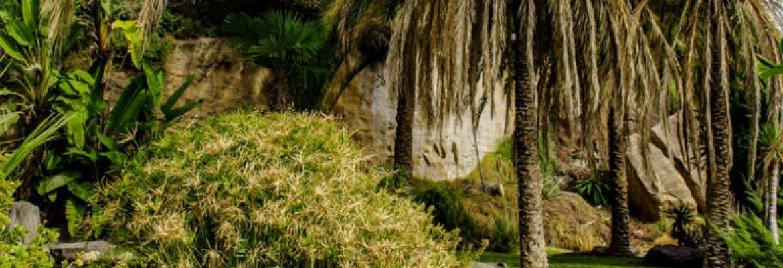 Caves and Botanica Gardens, Cueva de los Letreros,Almería, Spain