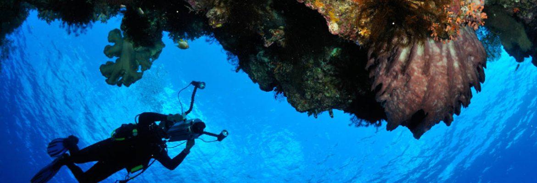 Diving Charter & Dive School, Gibraltar