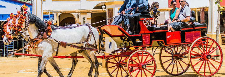 Horse Fair in Jerez  |  May 2018