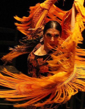 Jerez Flamenco Festival  |  Feb – Mar 2018