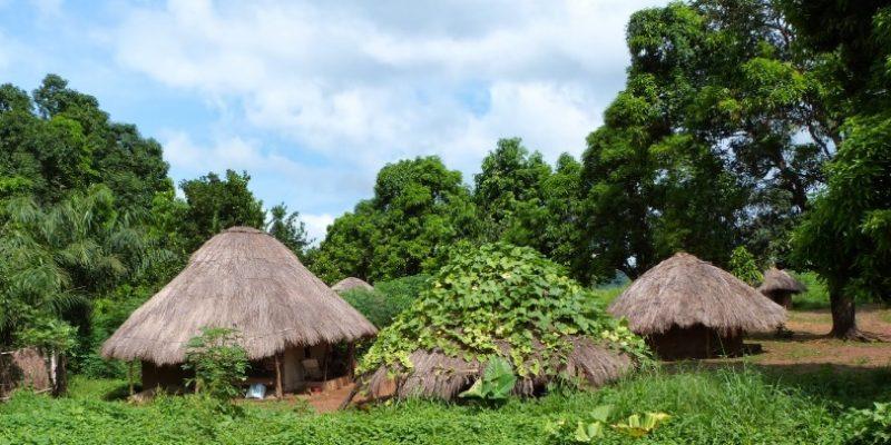 Timbo, Fouta Djalon, Guinea