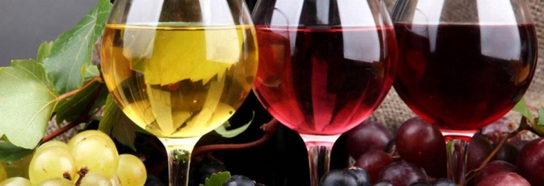 Garcia Hidalgo Winery, Ronda, Malaga, Spain