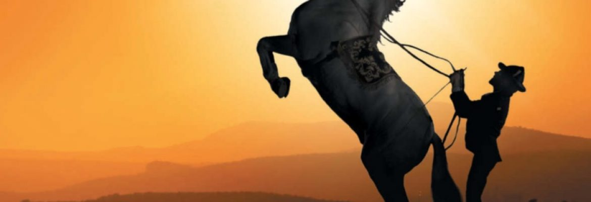 Royal Andalusian School of Equestrian Art – The Dancing Stallions of Spain