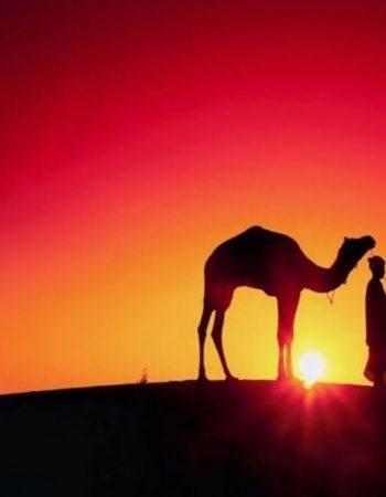 Mr Marouche, Sahara Guide, Sahara Desert, Hassilabied, Morocco