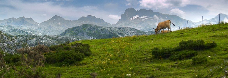 Cantabria, Asturias, Spain