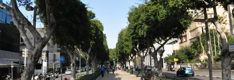 Rothschild Boulevard, Tel Aviv, Tel Aviv, District, Israel