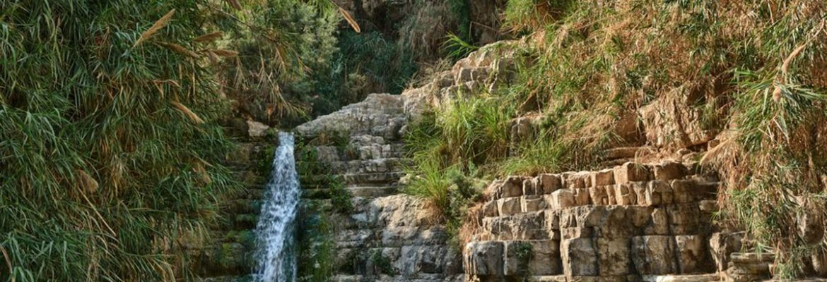 Ein Gedi Hot Springs, Jerusalem, Israel