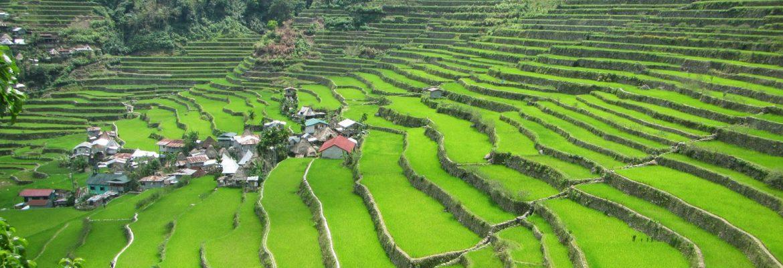 Hapao Rice Terraces,Ifugao, Luzon, Philippines