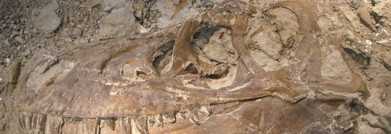 Riversleigh Fossil Centre, QLD, Australia