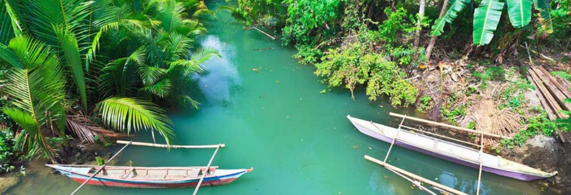 Firefly River Tours,Sorsogon, Philippines